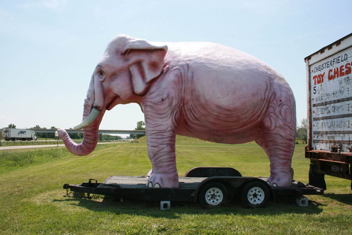 🐘 Pink Elephant (Not in Glasses) in Livingston, Illinois